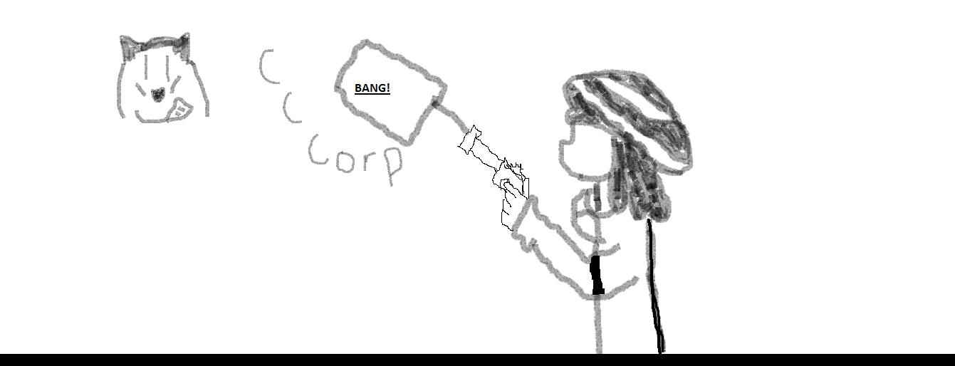 CcCorp