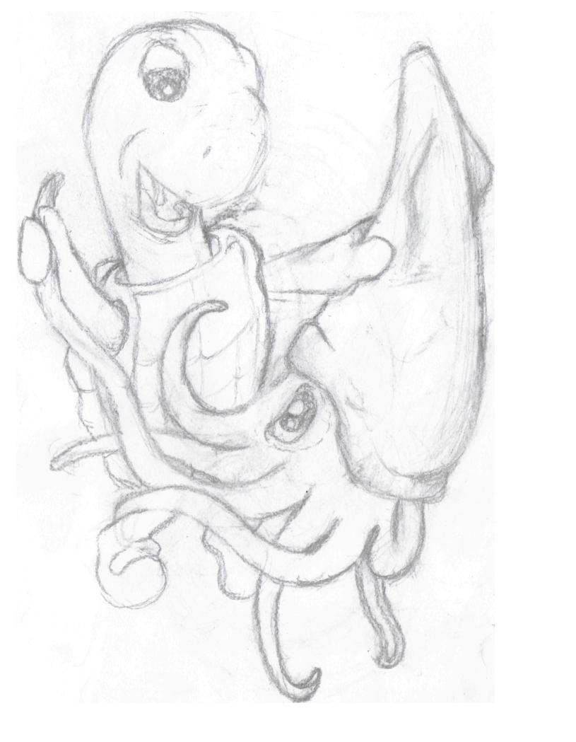 Turtle vs Squid