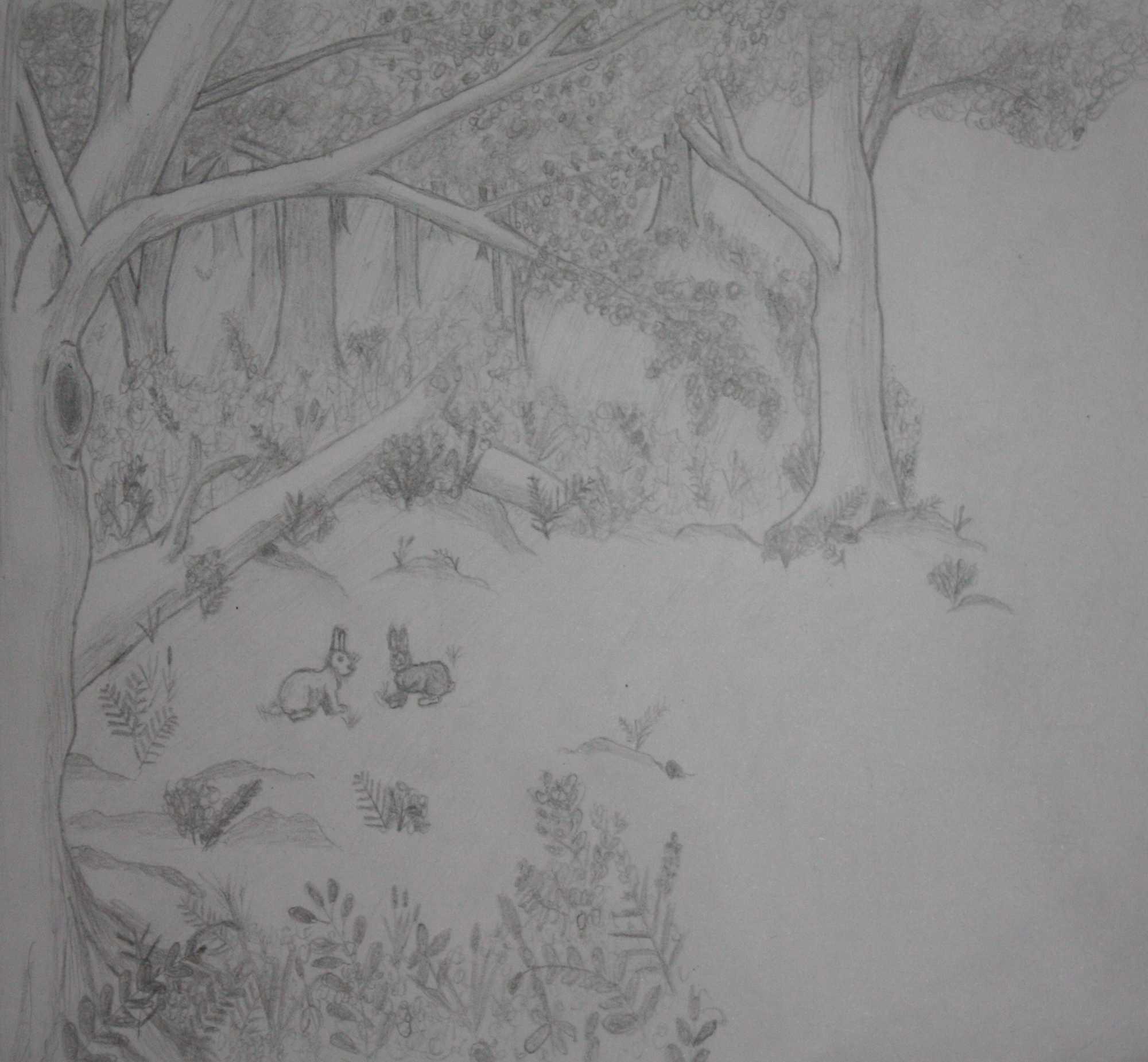 woodland lanscape, unfinished