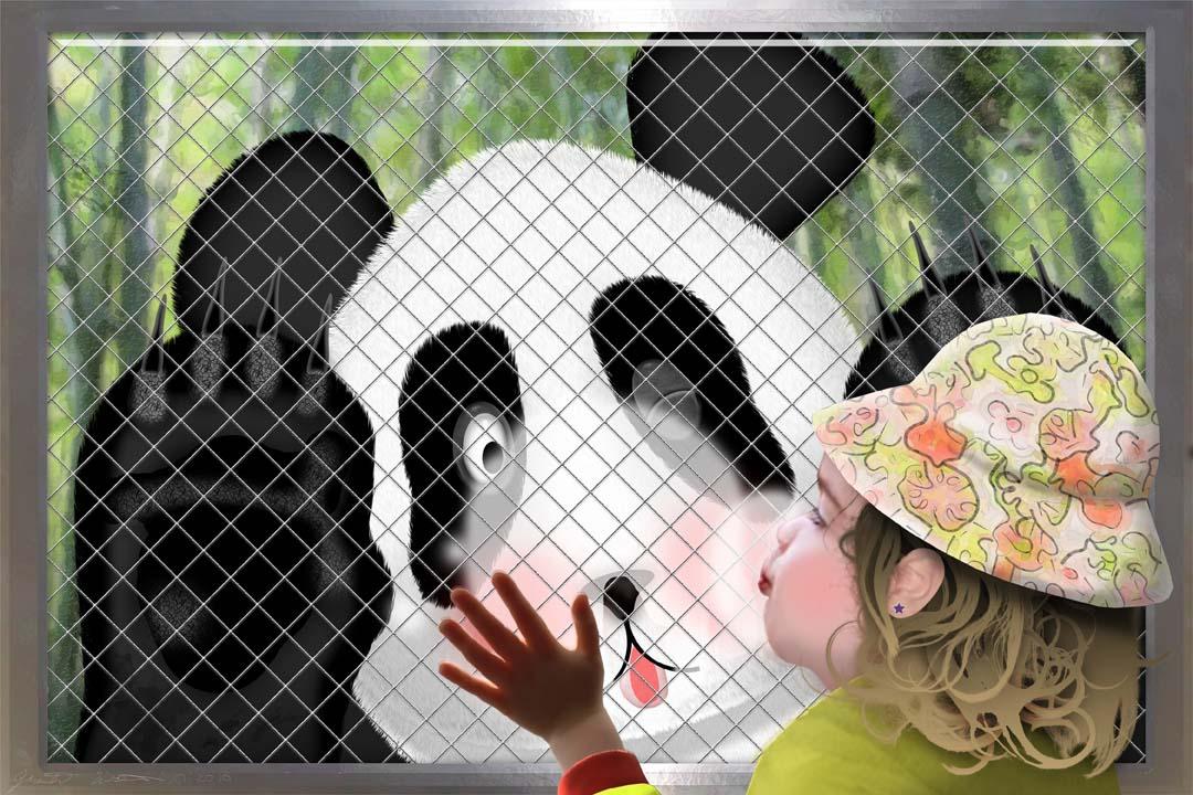 Love at first Panda