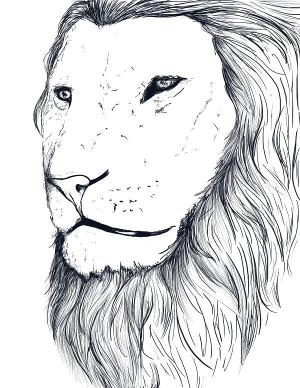Namean Lion