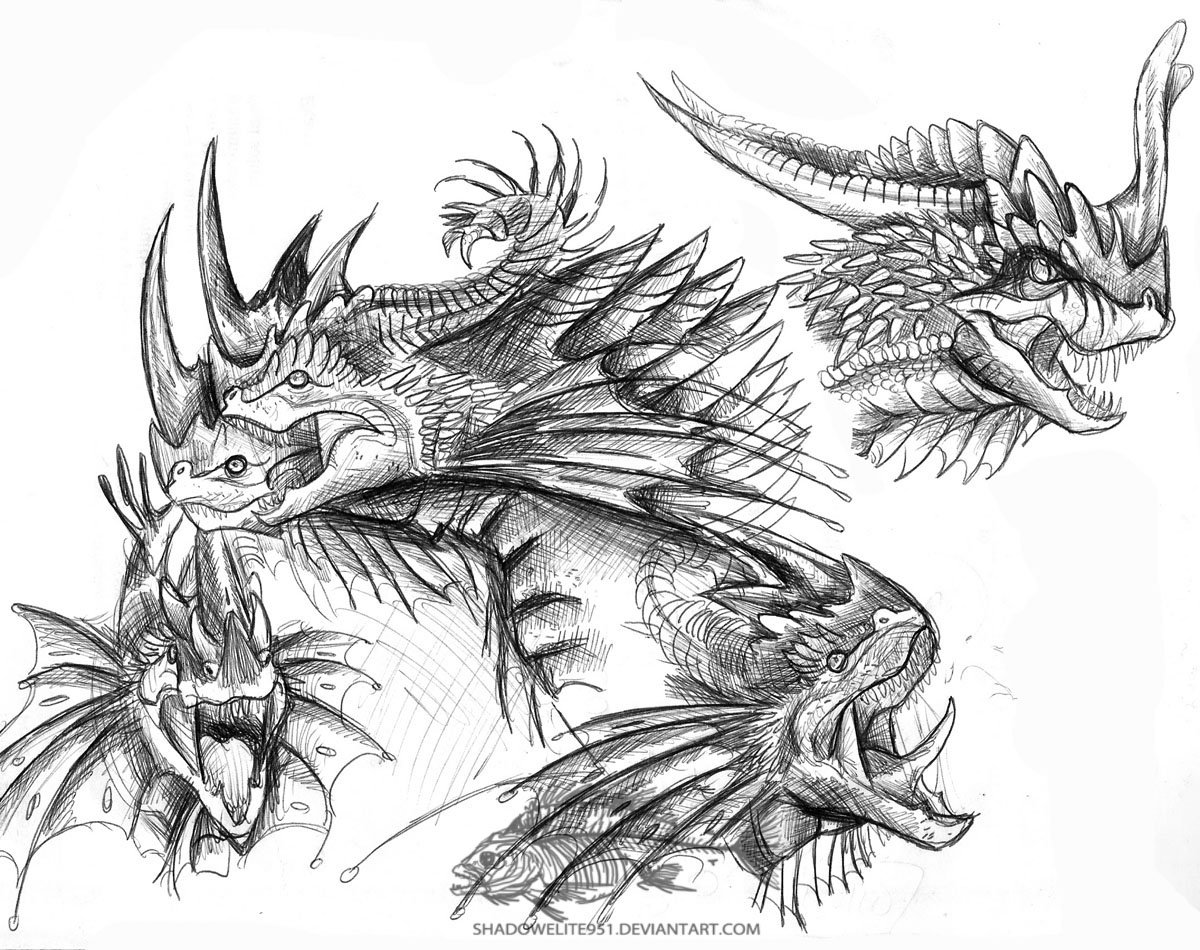 Dragon Headshots