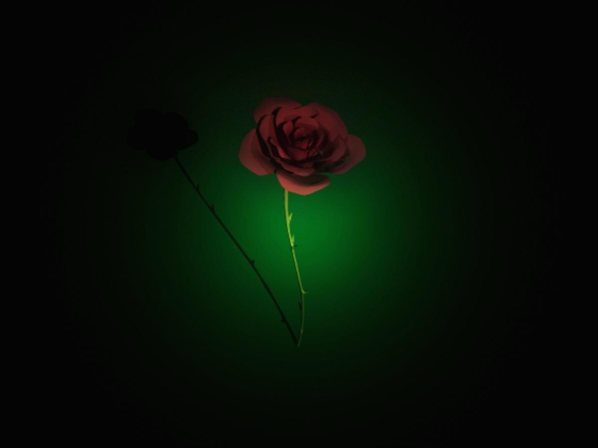 {BT} Rose