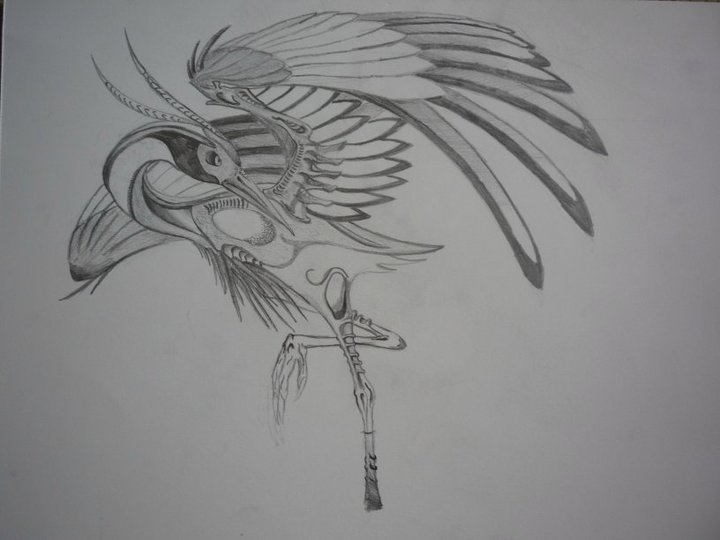 bio-mechanical crane