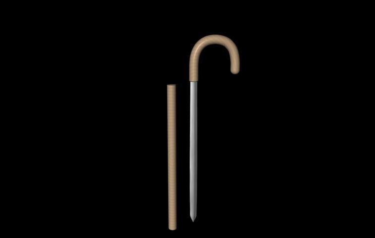 Cane Sword