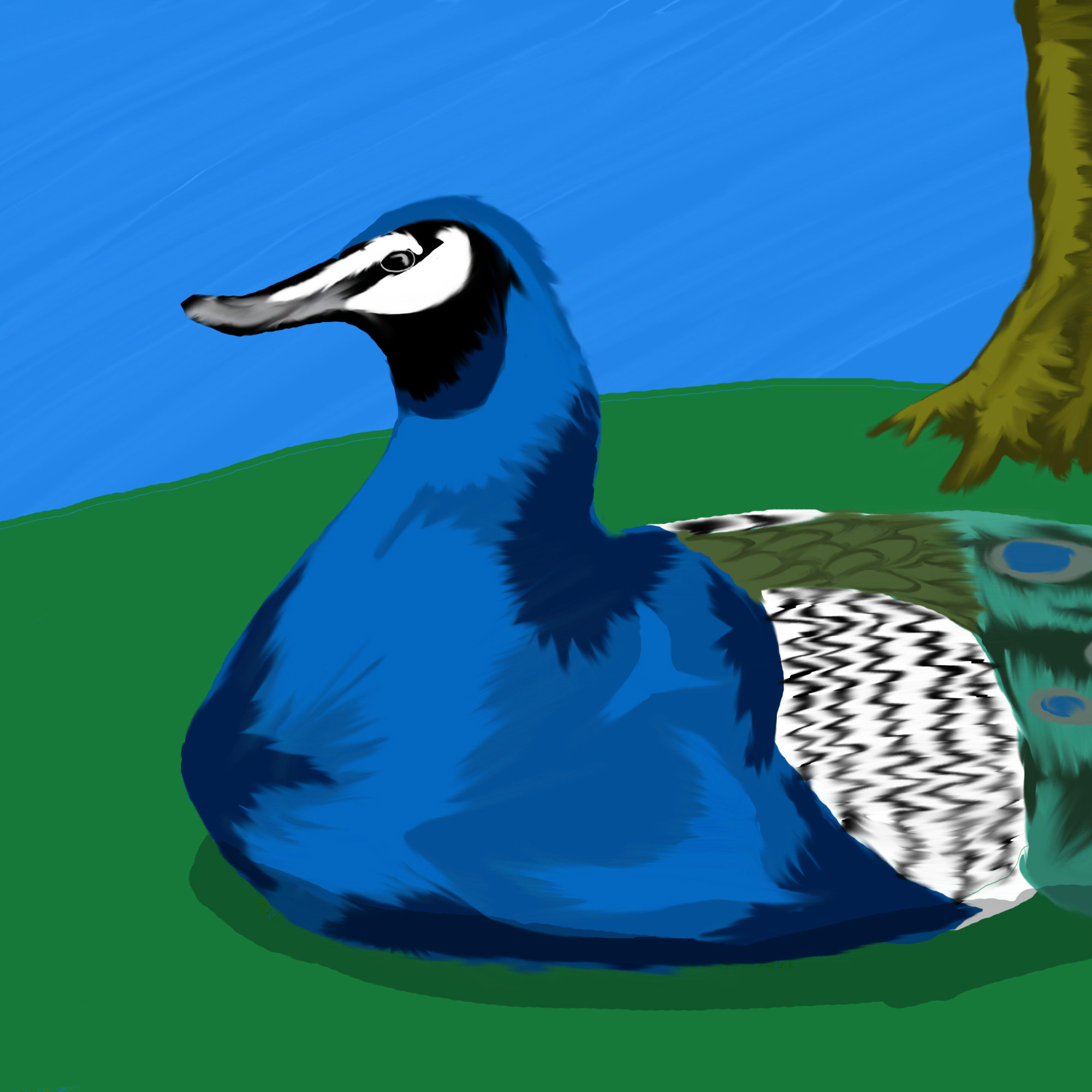 Peacock-Duck Hybrid