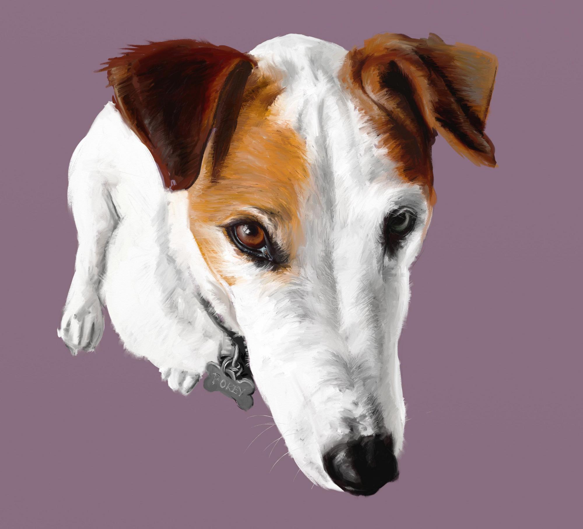 Pokey the Dog
