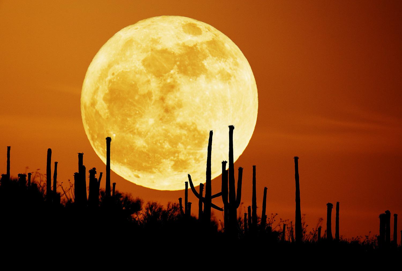 A desert moon