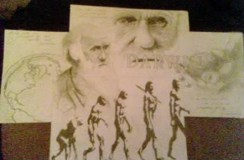 Darwin Appreciation Collage