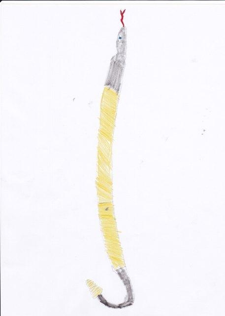 Rattle Shirasaya
