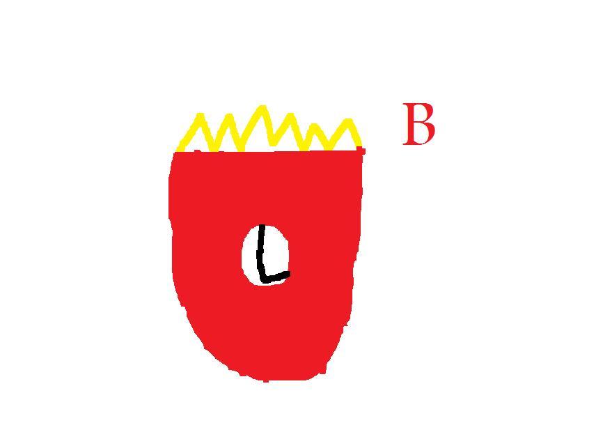 SBC and B