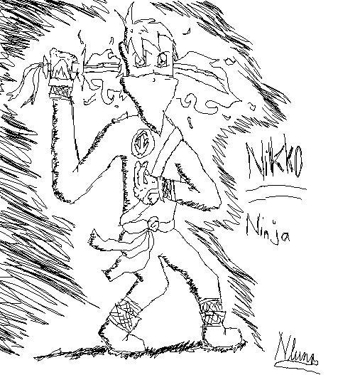 Ninja of my own