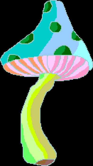 mushroom!!