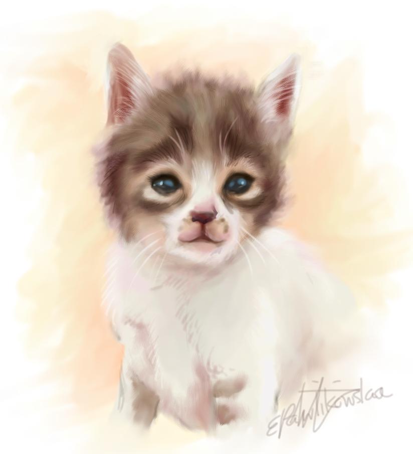 Speed paint Kitten