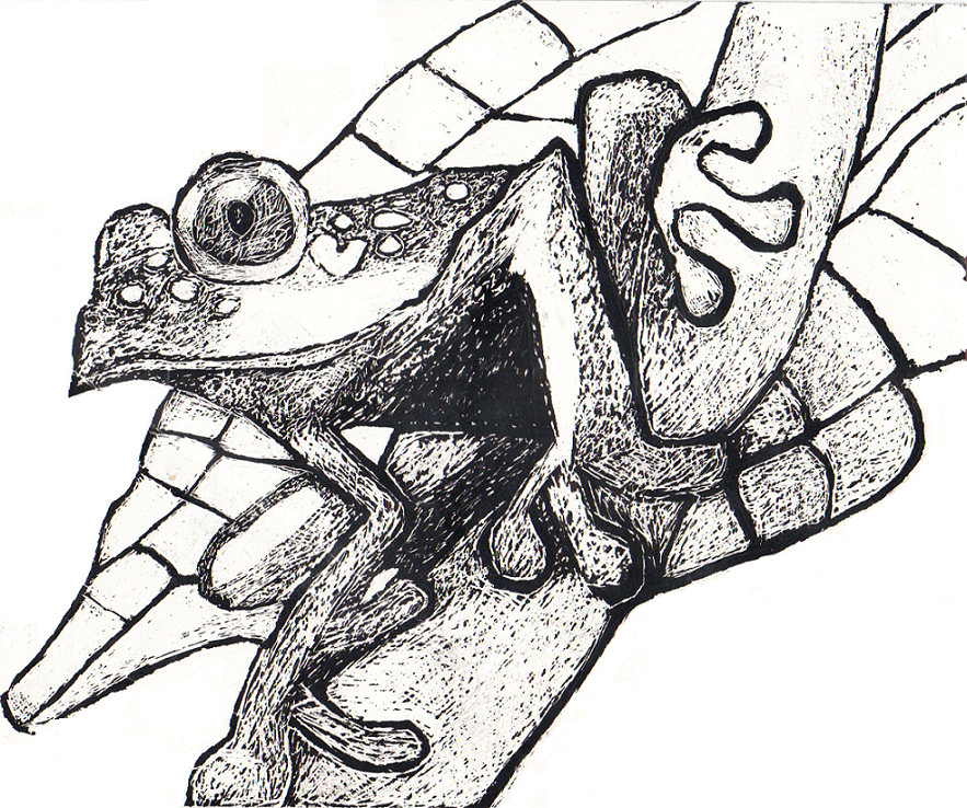 scratch frog