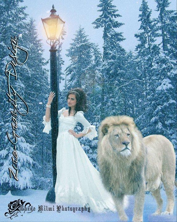 Narnia Themed