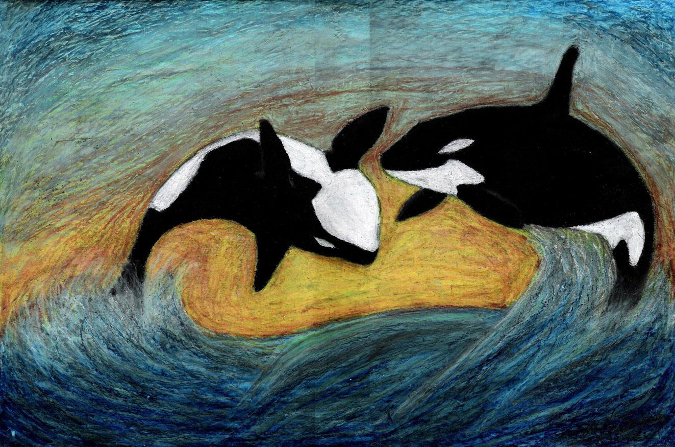Orca's At Play