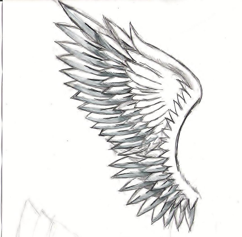 Angel Wings Drawings Wing drawing