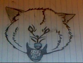 I drew a wolf...