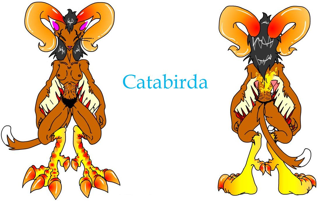 Catabirda Chick