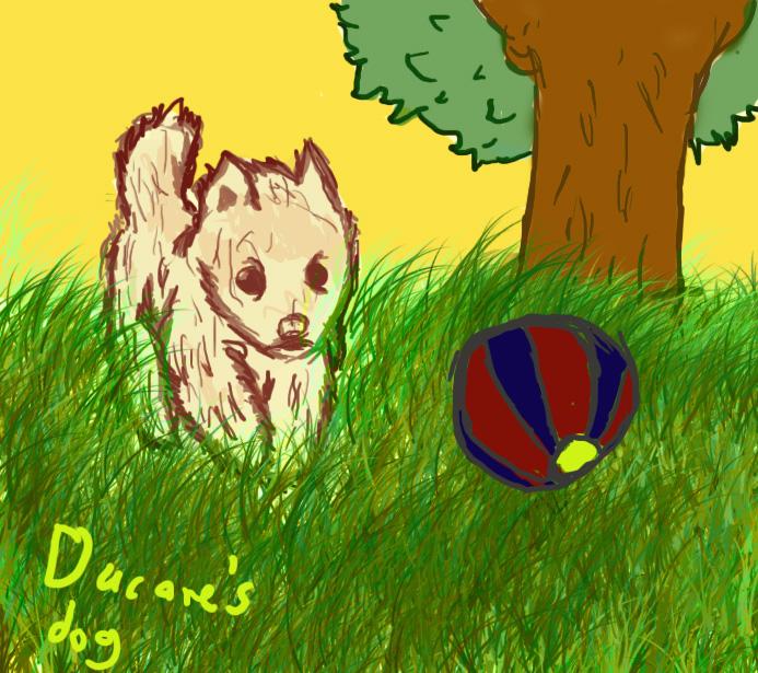ducare's dog