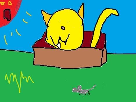 BOXSCAT
