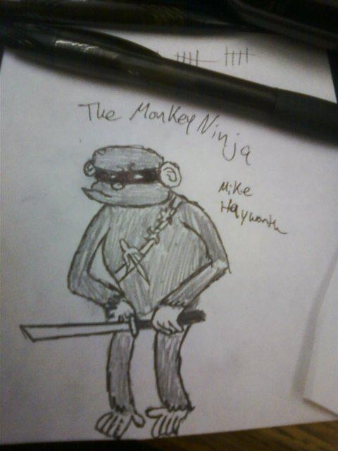 TheMonkeyNinja1