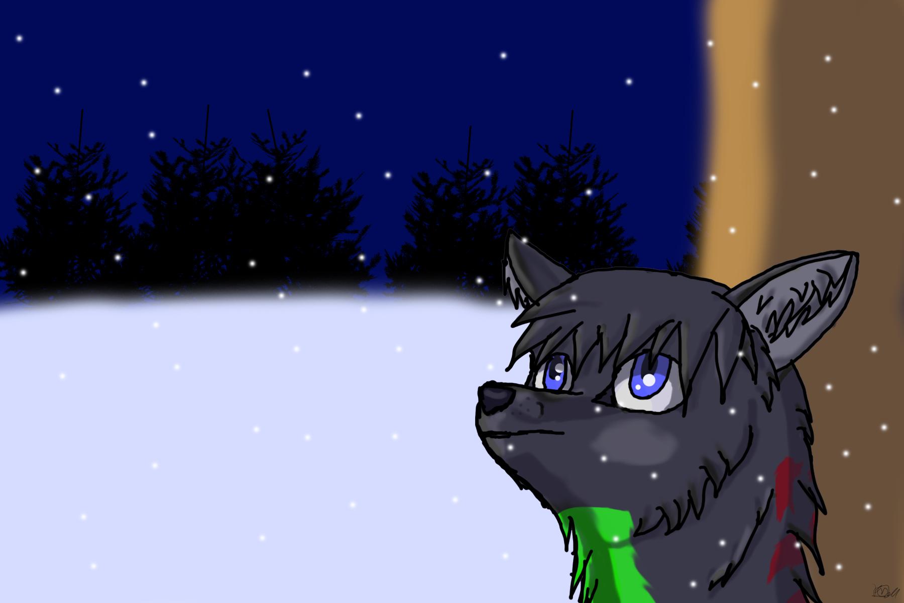 Shai meets snow