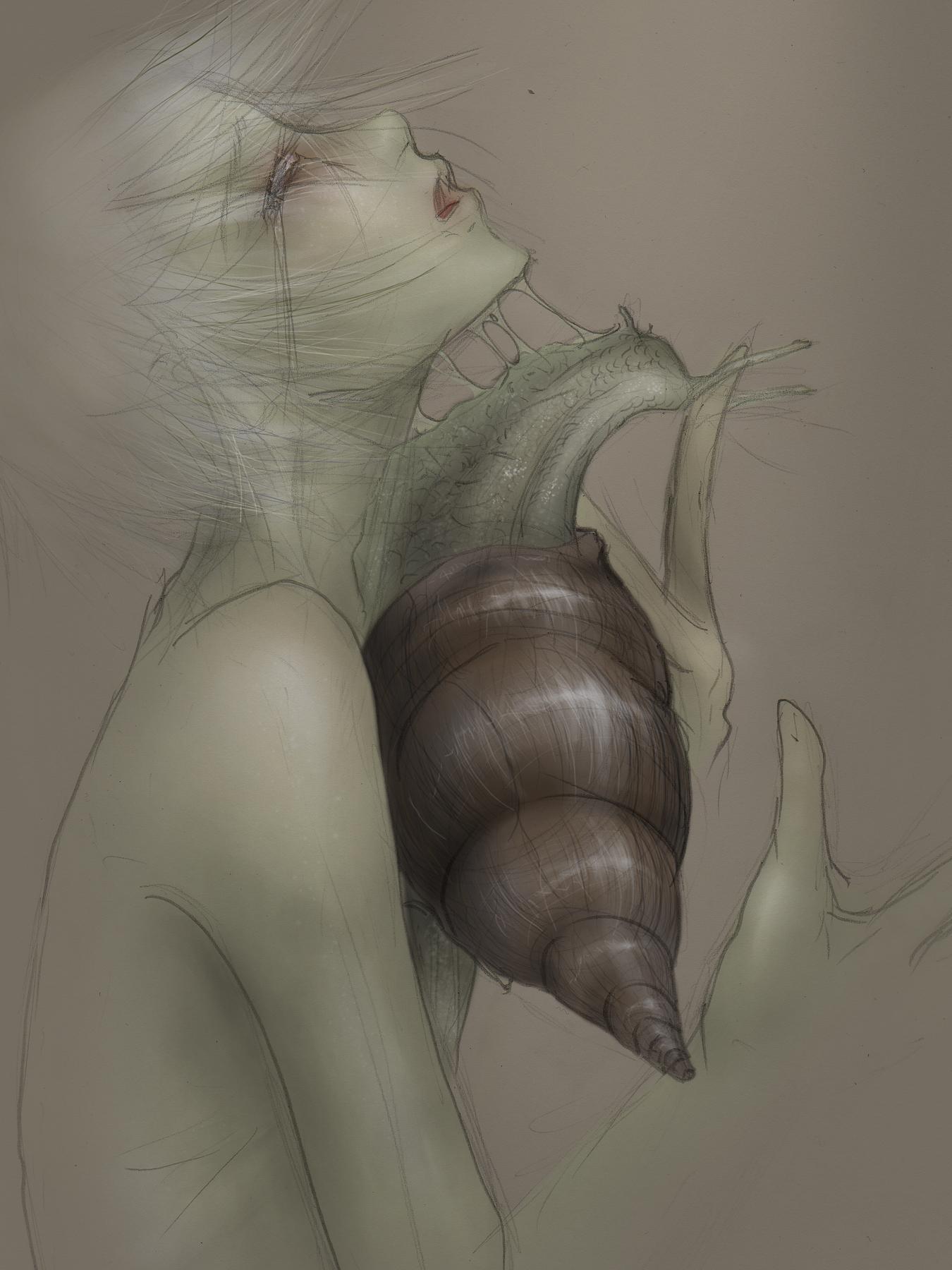 .Snail.
