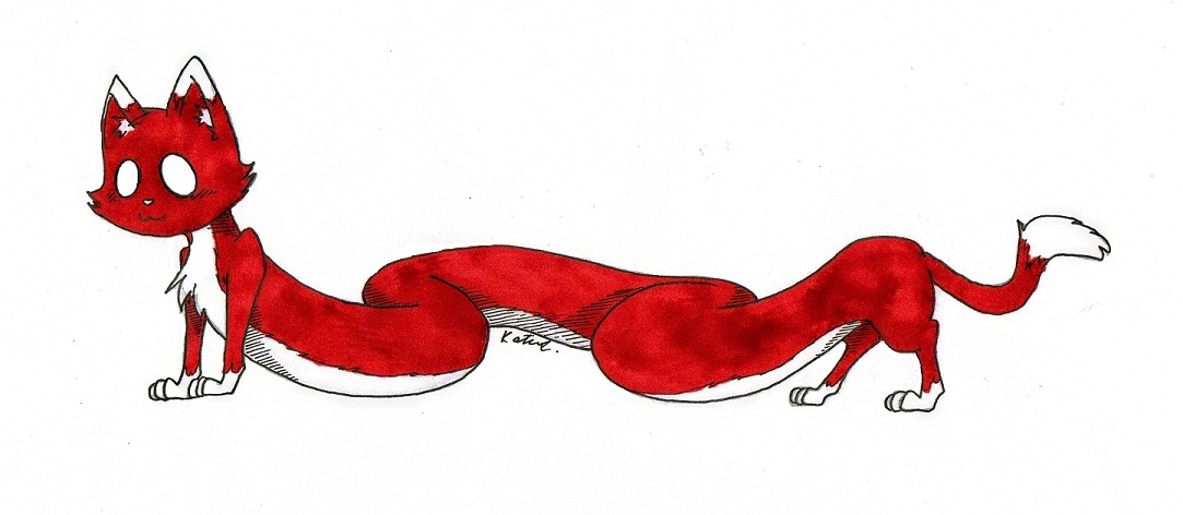 Long, Red Cat