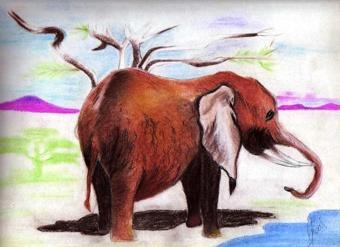 Elefant - pastels