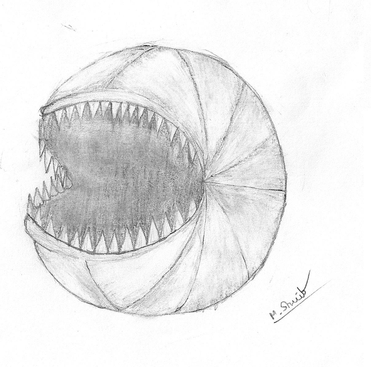 pac shark