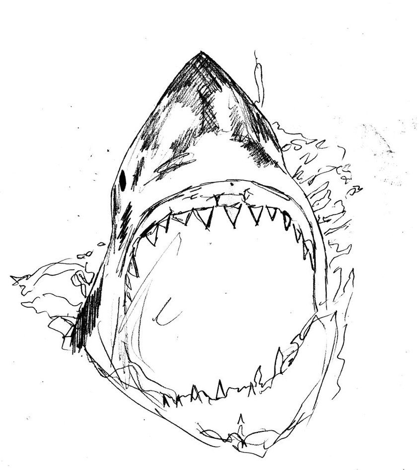 Killer Shark Drawing