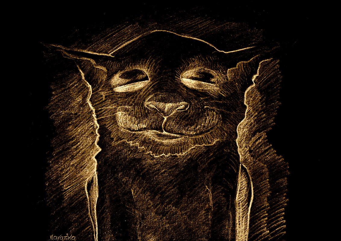 Cat Dormant