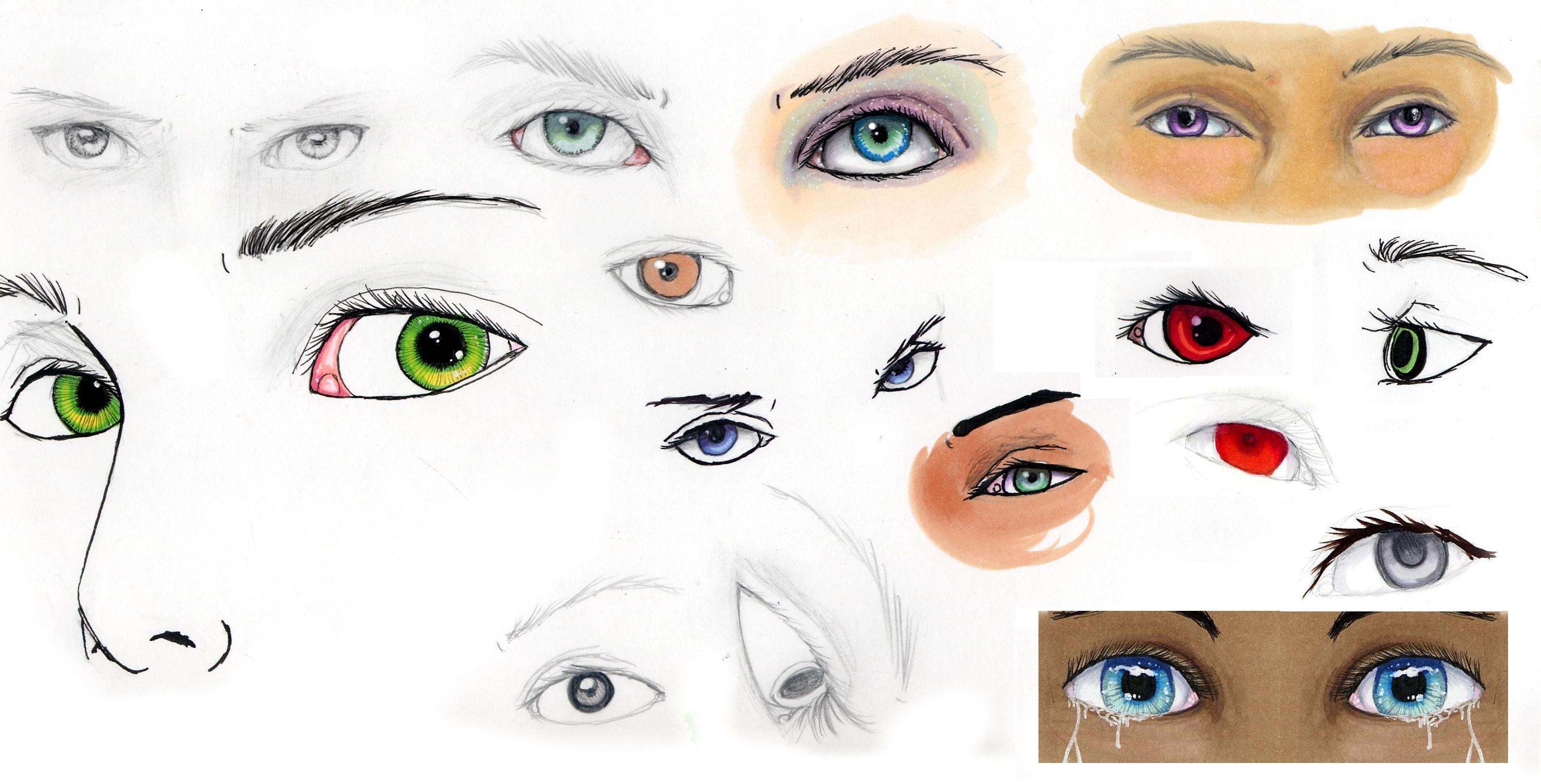 Eye reference sheet