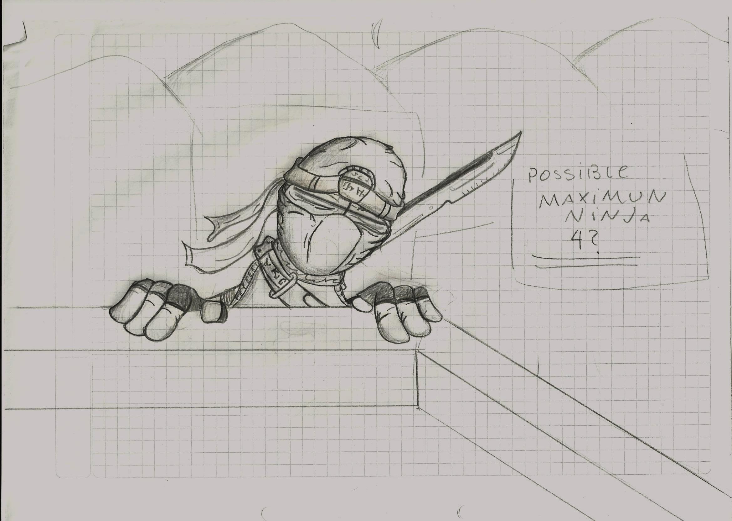 possible maximun ninja 4