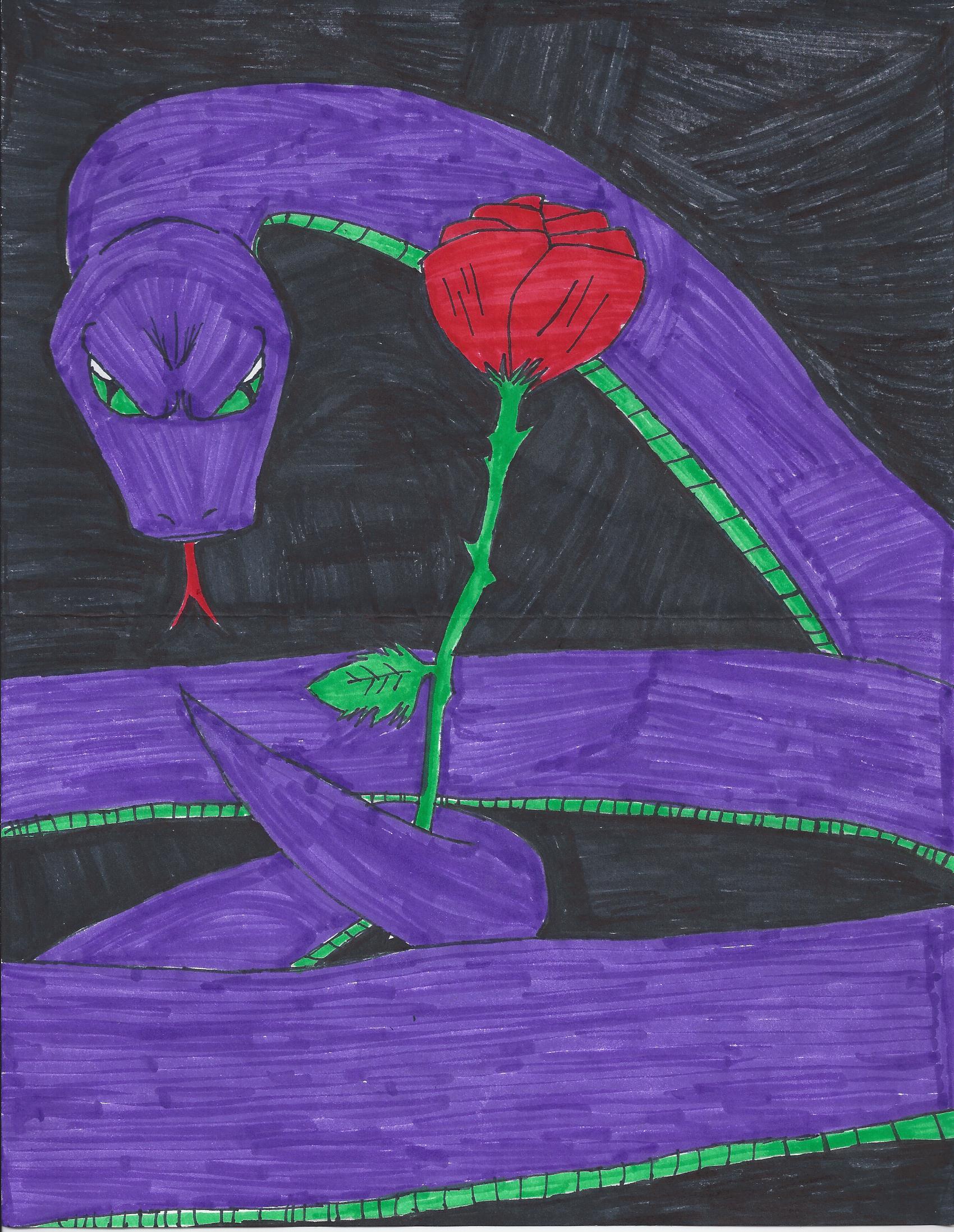 rose viper