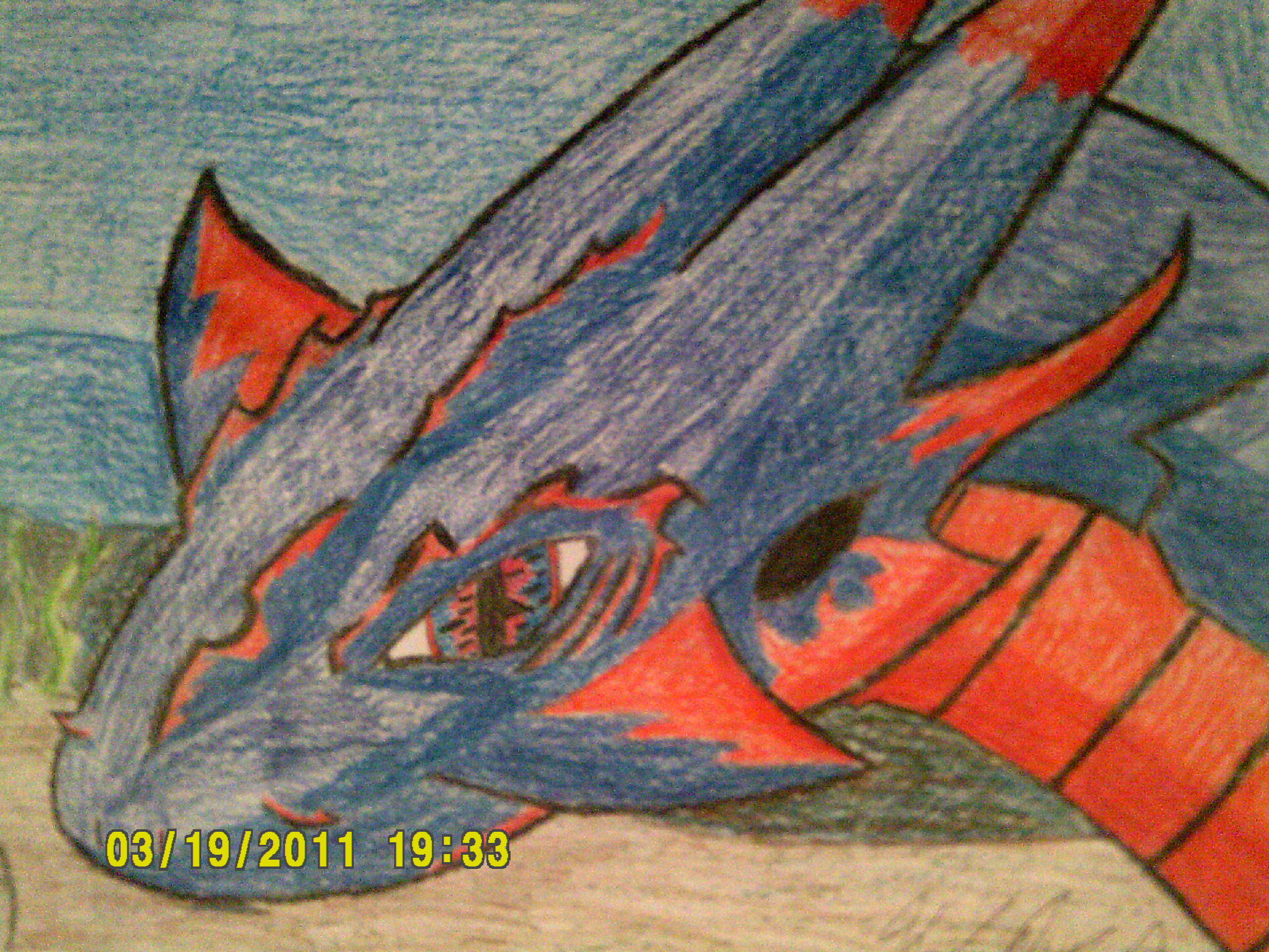 Dragon of Fire and Water