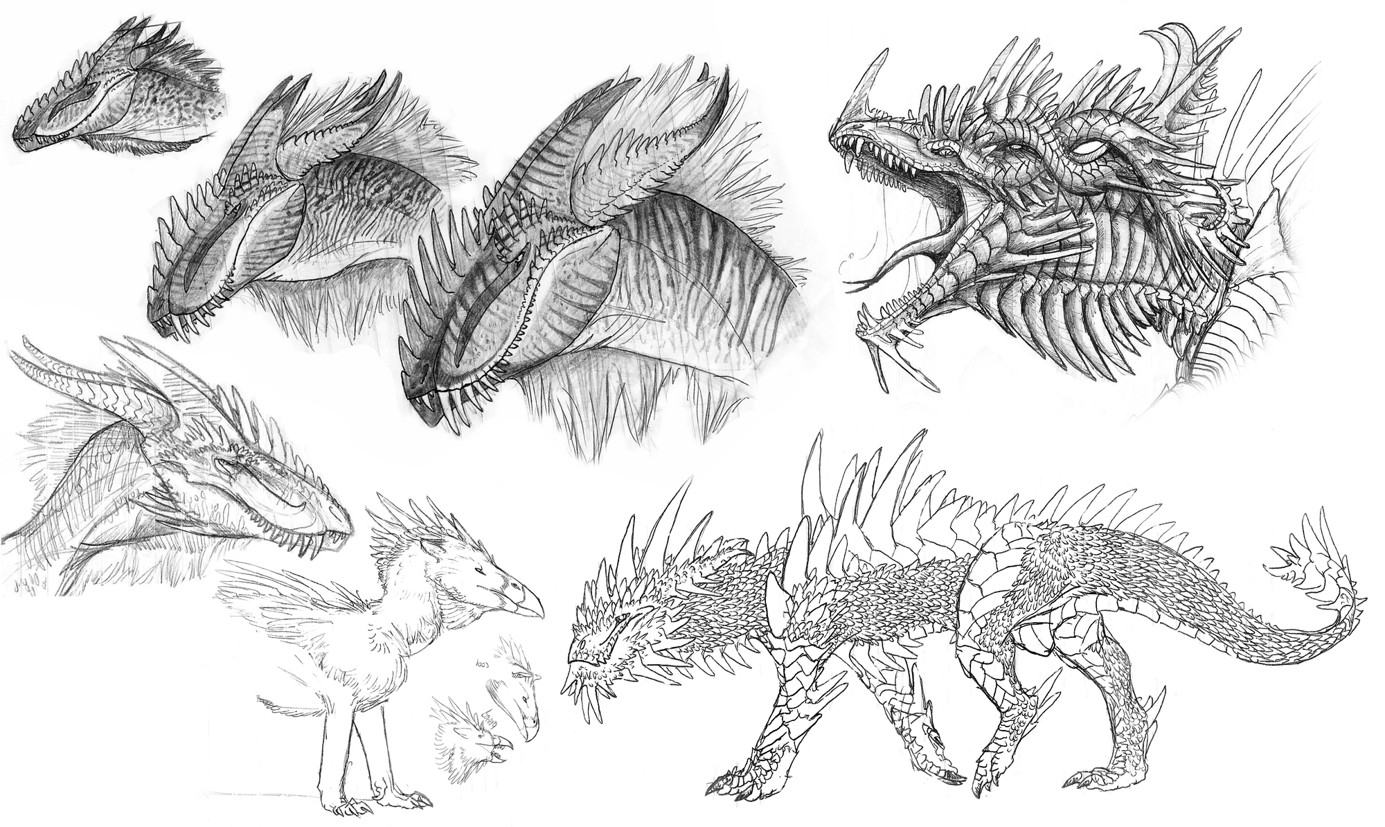 Dragons and Stuffs