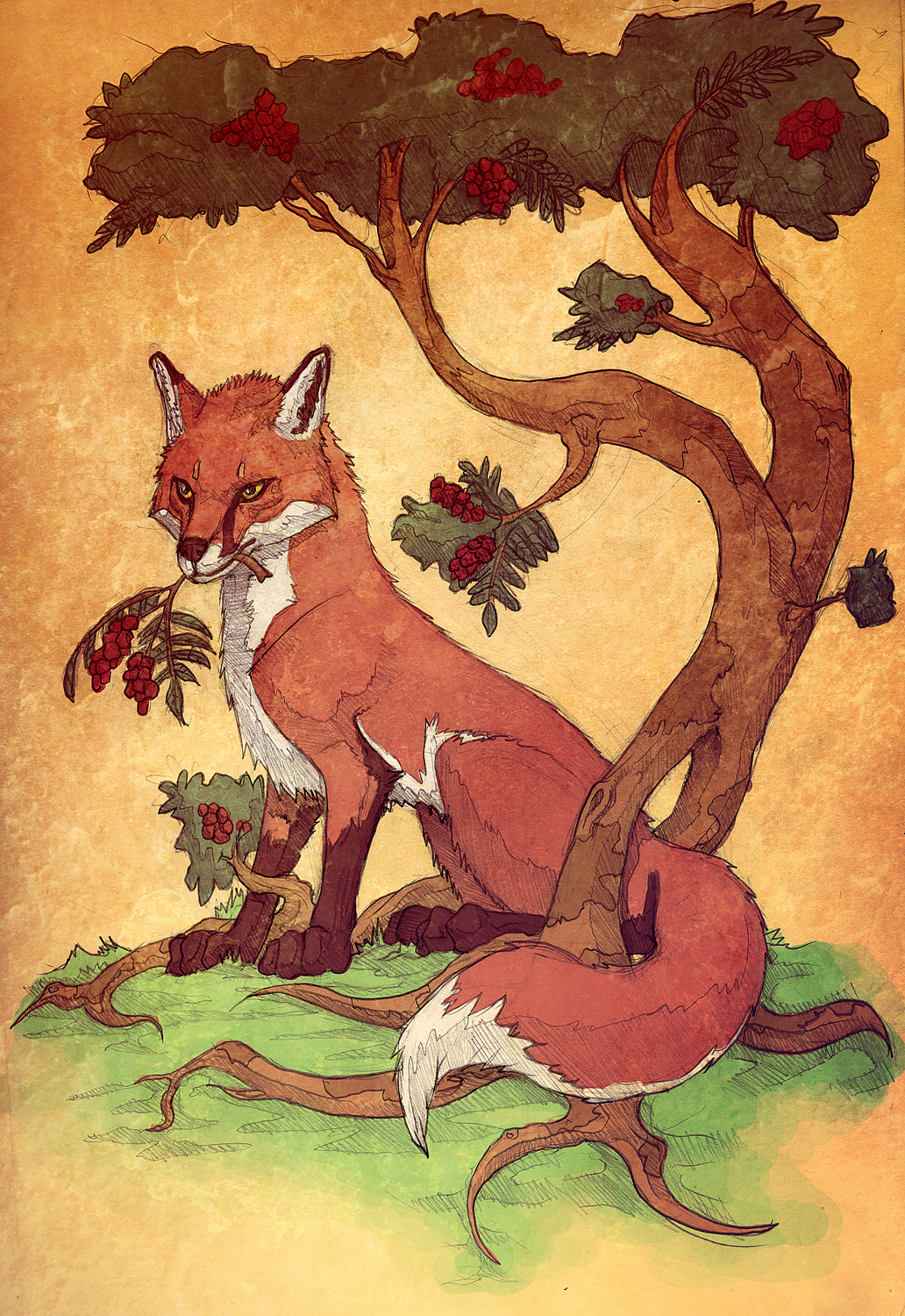 Commission: Red Fox