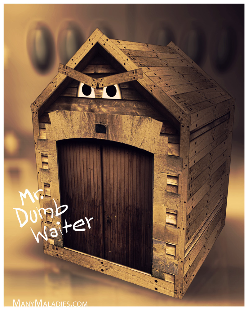 Mr. Dumb Waiter