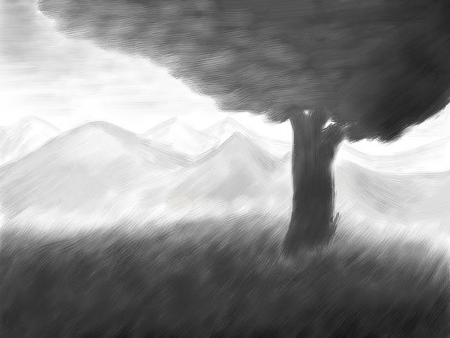 Wistful Meadow