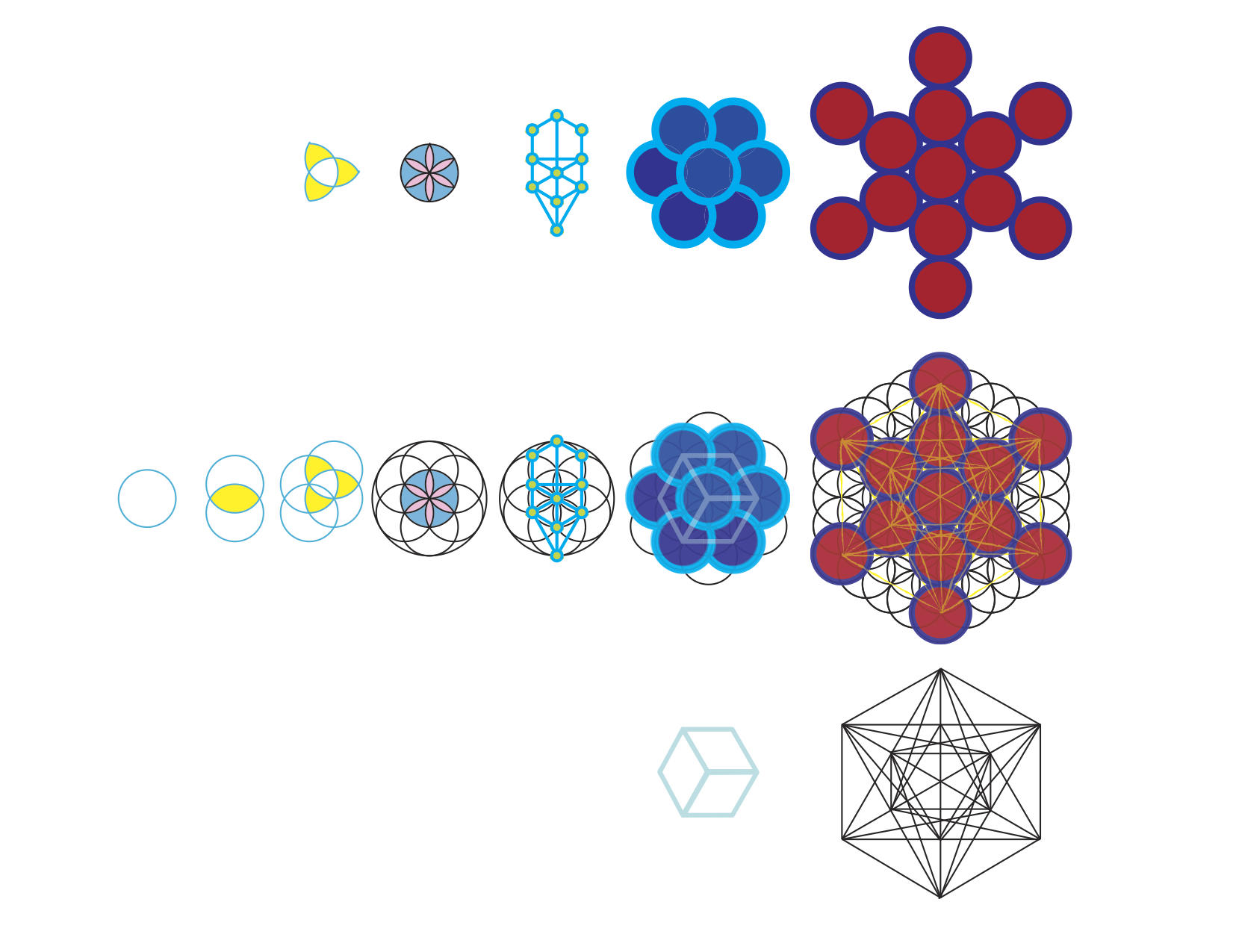 The Flower of Life - Creation