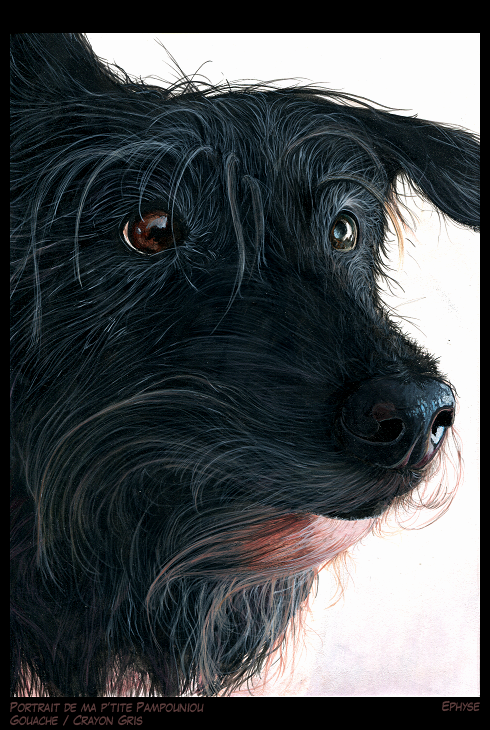 Pampouniou (my dog)(Painting)