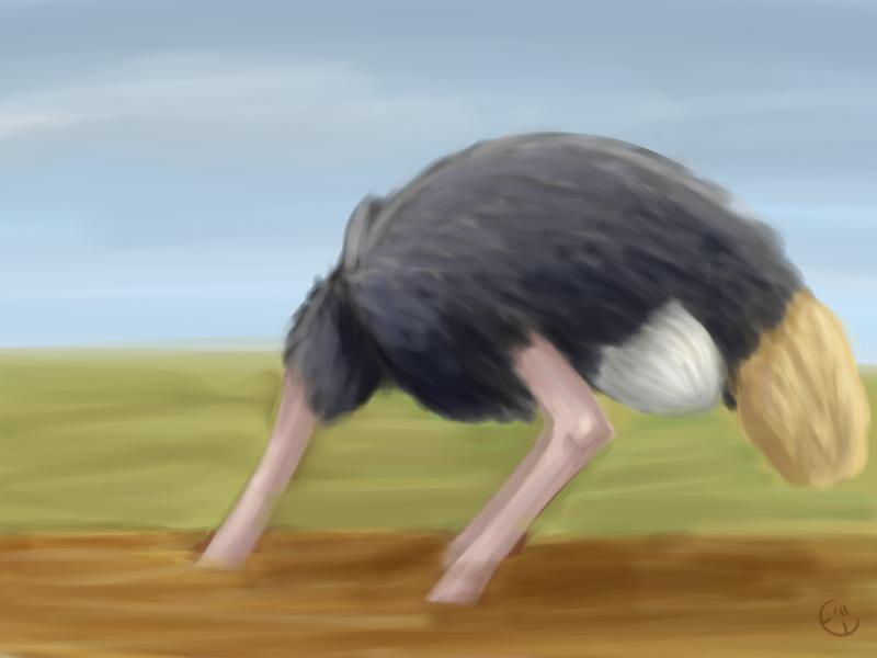 Ostrich Speedpaint