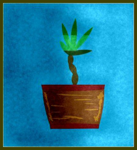 Canubus plant