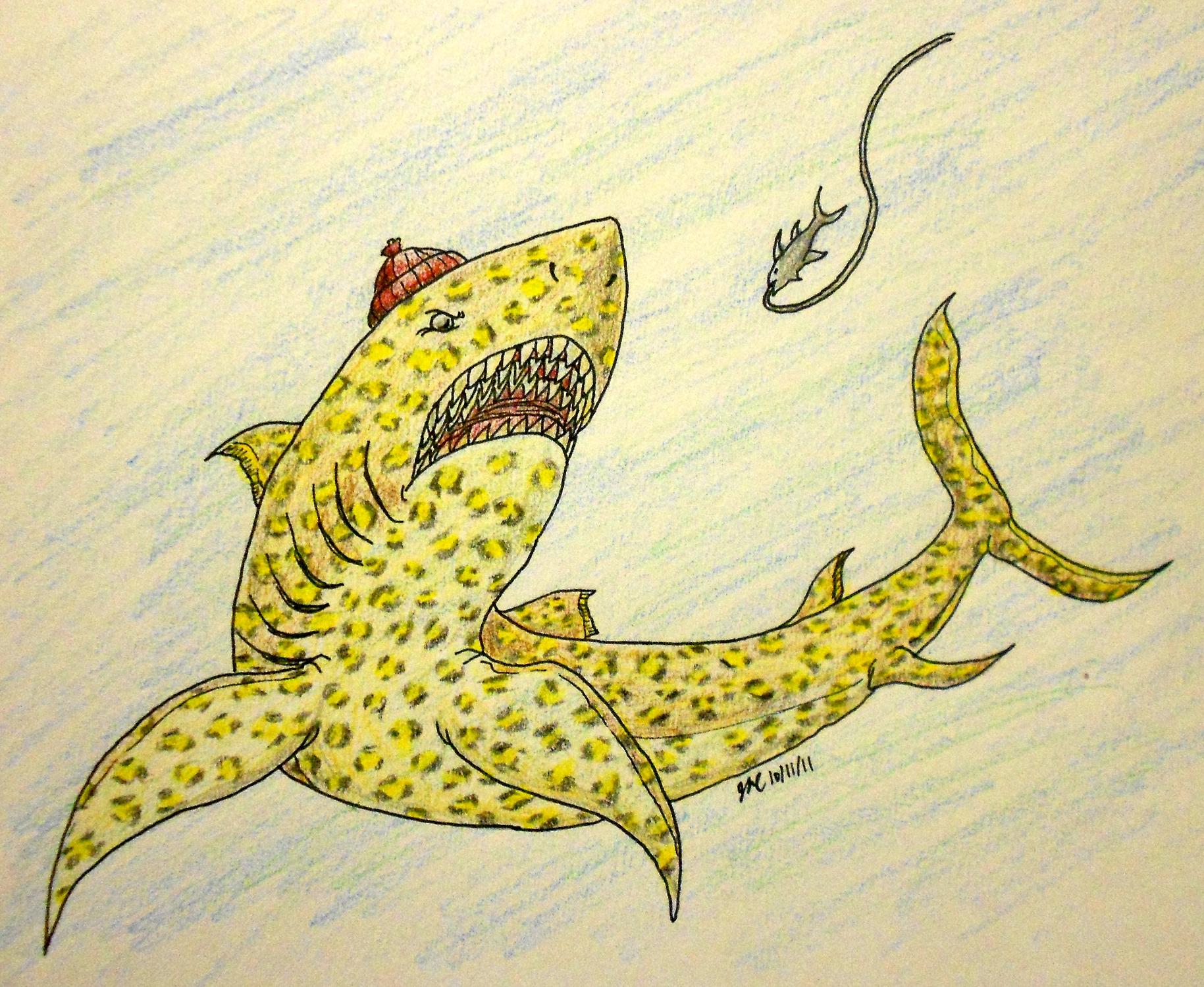 Jaguar Shark