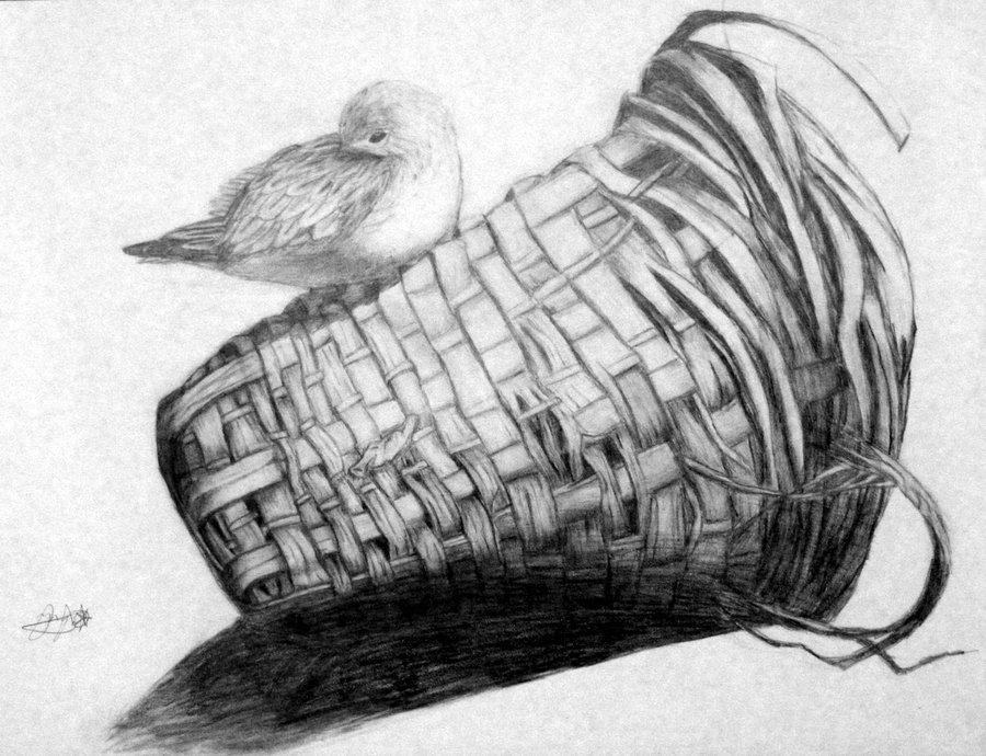 A Bird And Basket
