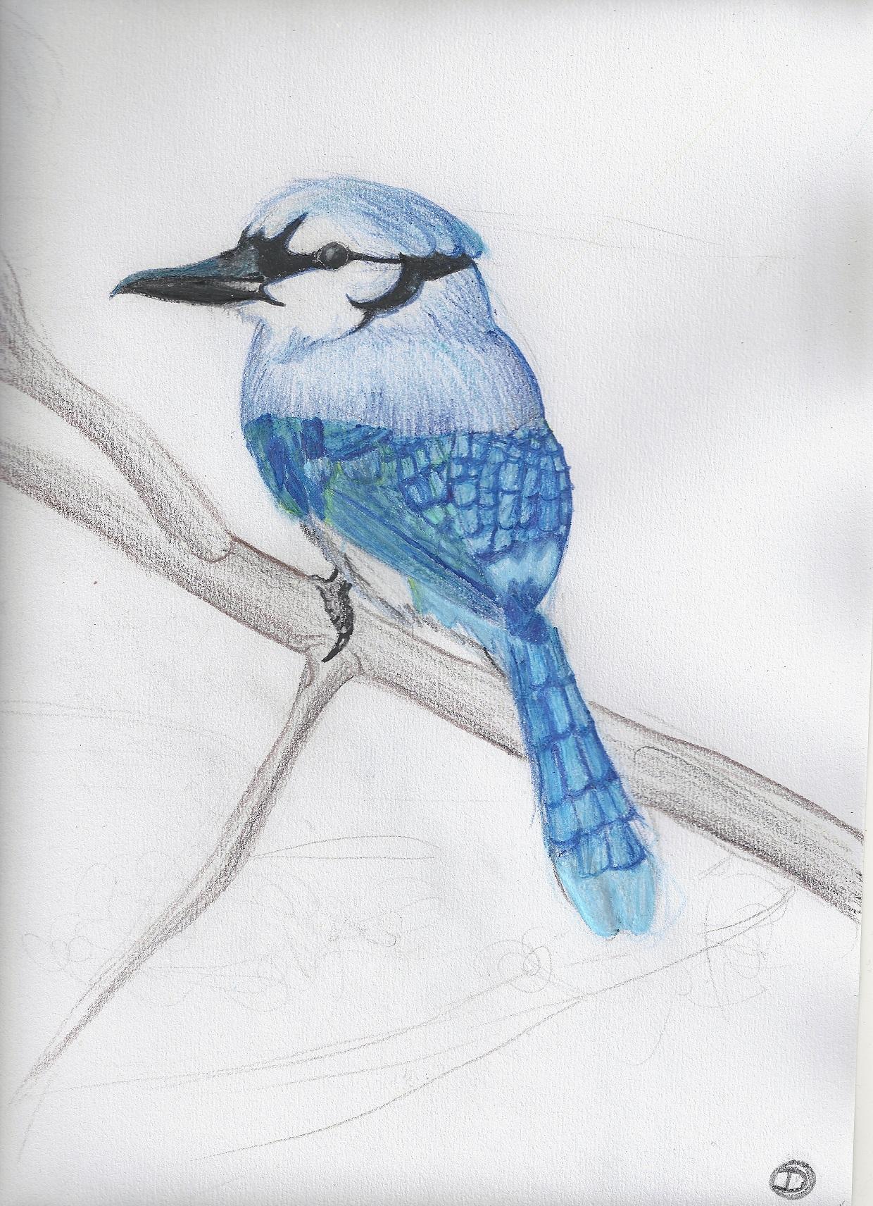 little 0101110 blue birdie