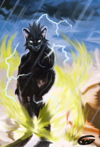Level 2 Feline